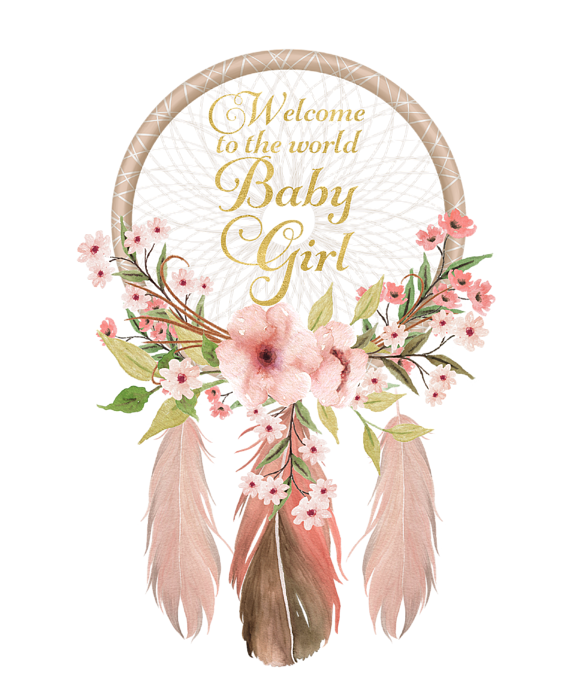 Dreamcatcher transparent pink. Welcome to the world