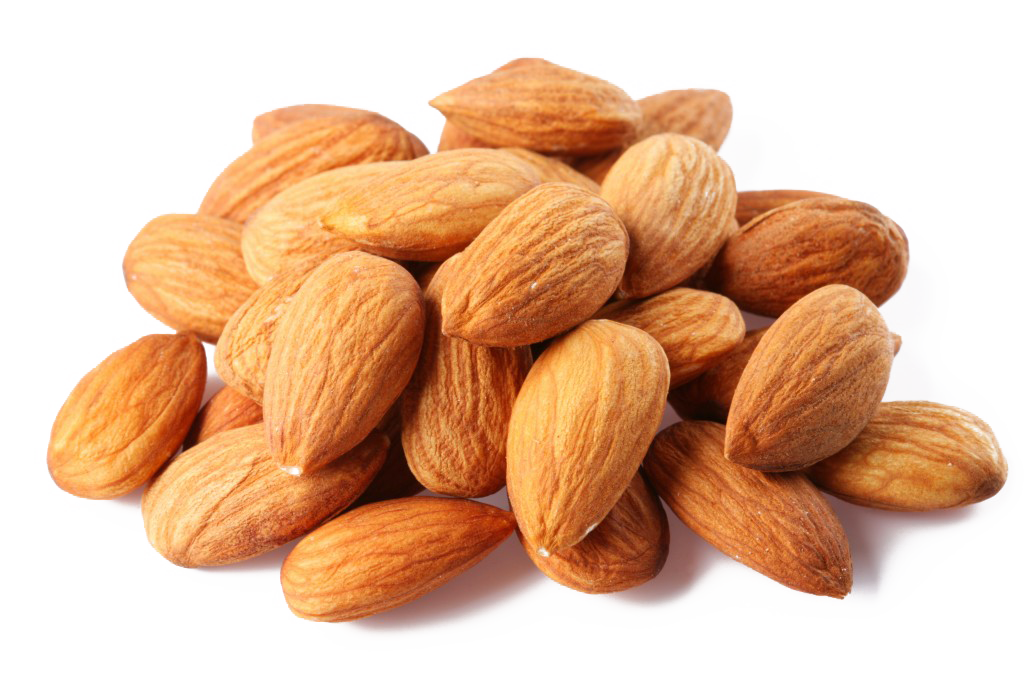 Png nuts. Almond nut clip art