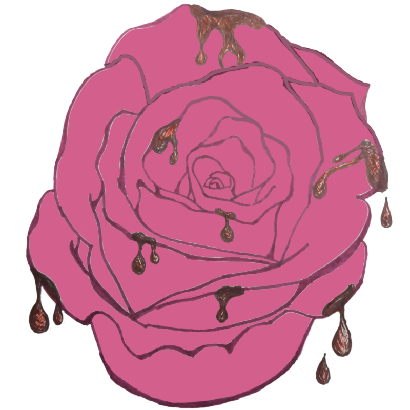 Pink drawing rose. Our hand drawn art