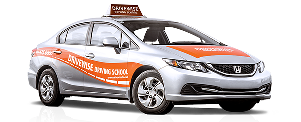 Driver vector test drive. Full driving program wise