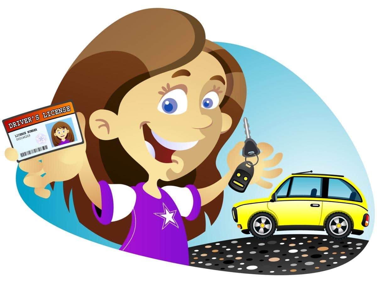 drivers license clipart first driver