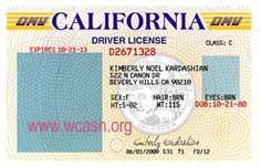 Drivers license template psd