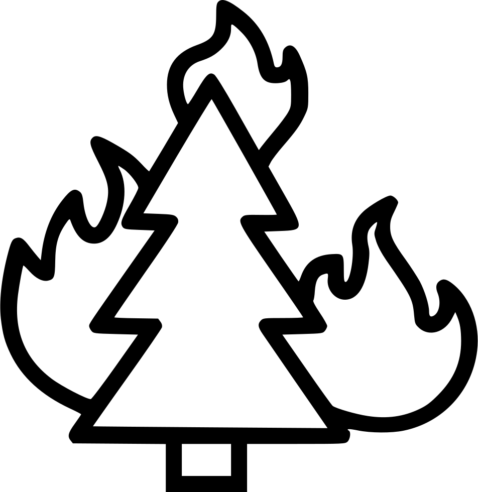 Ds bonfire png. Wildfire forest fire combustion