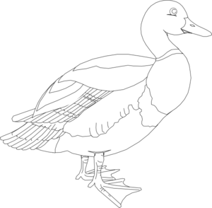 Vector duck black and white. Clip art at clker