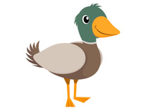 Duck clipart. Search results for clip