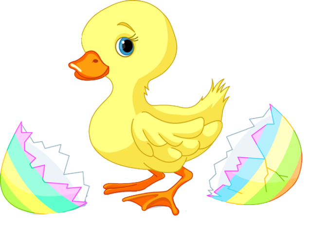 Free cliparts download clip. Duck clipart baby duck clip art royalty free download