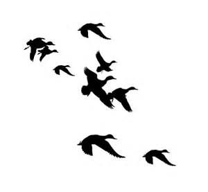 Duck clipart in flight. Flying black and white
