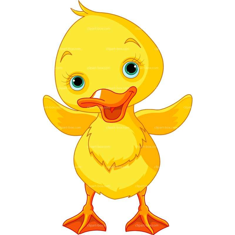 Royalty free vector design. Duckling clipart baby duck clip art black and white