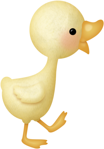Duckling clipart beautiful. Pin by alice carlson