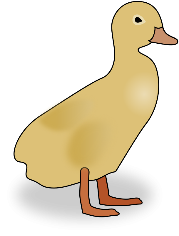 Duckling clipart simple. Free baby pictures download