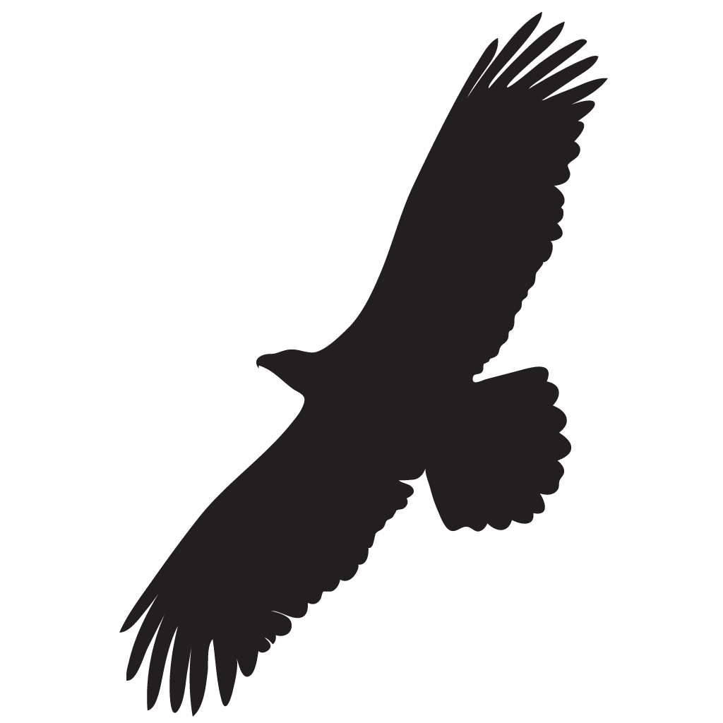 Eagle silhouette png. Of at getdrawings com