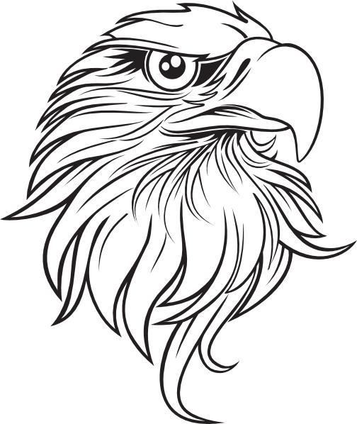 Eagle vector png. Black and white cartoon