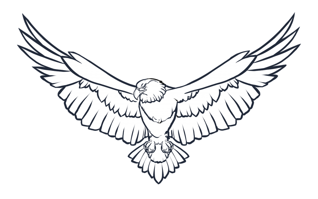 Eagle wings png. Photo peoplepng com