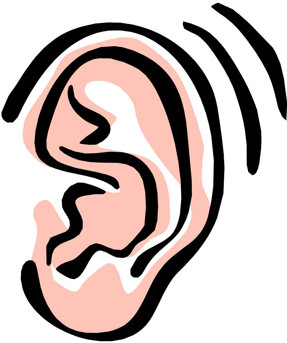 Ear clip art png. Collection of clipart