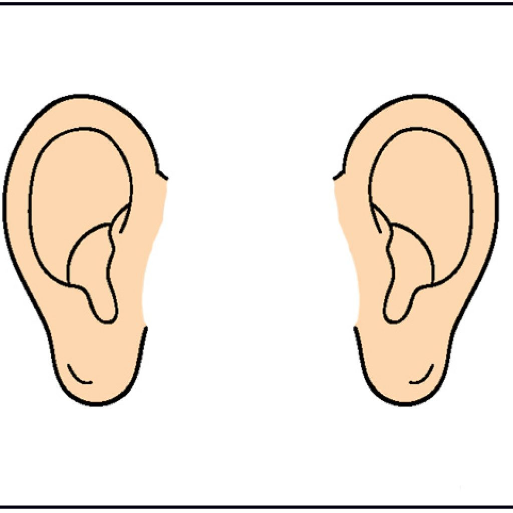 Ear clipart. Listening panda free images