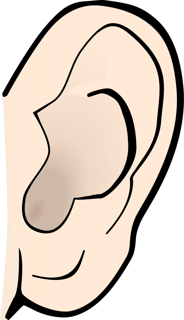 ear cartoon png
