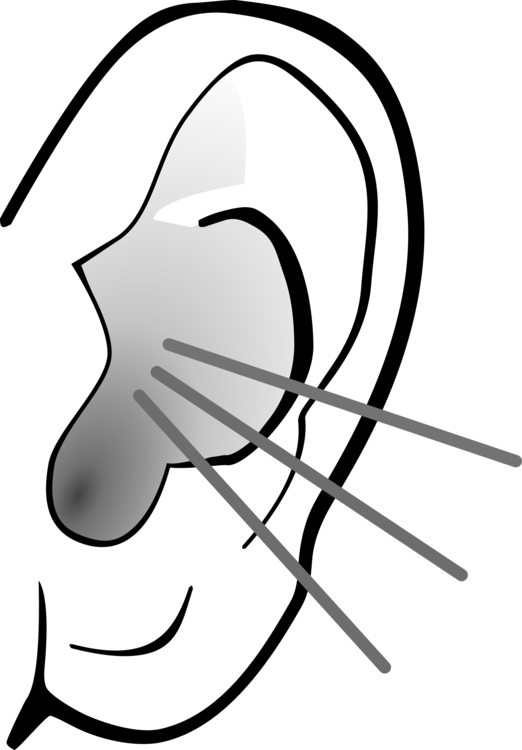 Ear clipart sense hearing. Download listening free commercial