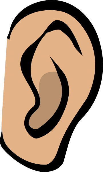 Ear clipart small ear. Body part clip art