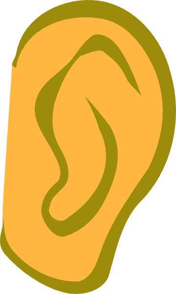 Ear clipart small ear. Gold clip art at