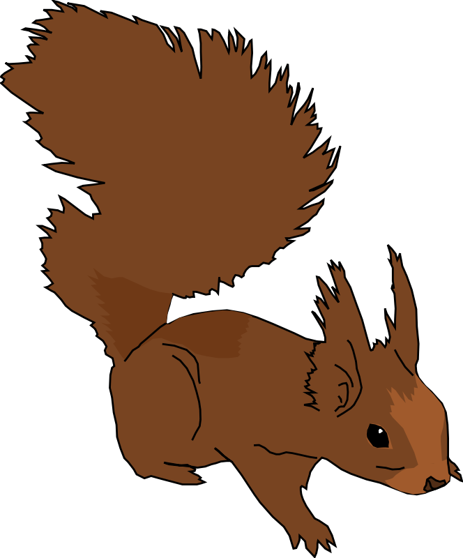 Ear clipart squirrel. Free cartoon images download