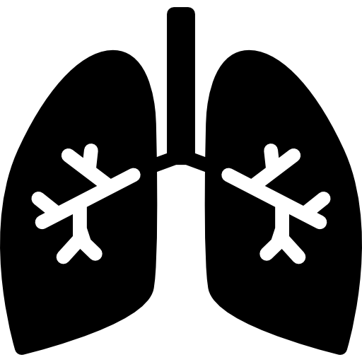 Earring vector cufflink. Lungs with bronchi icons