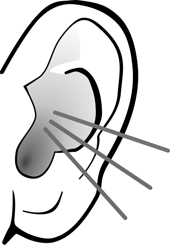 Ears clipart attentiveness. Png two transparent images