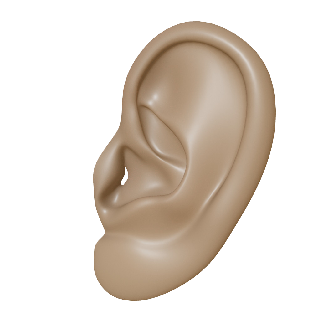 Ears clipart brown. Ear png transparent images