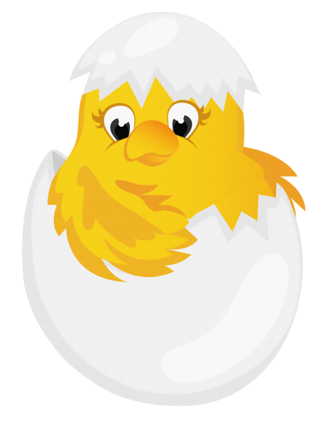 Easter chick png. Chicken in egg transparent