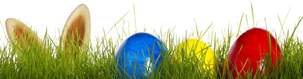 Eggs vector grass. Easter in png images