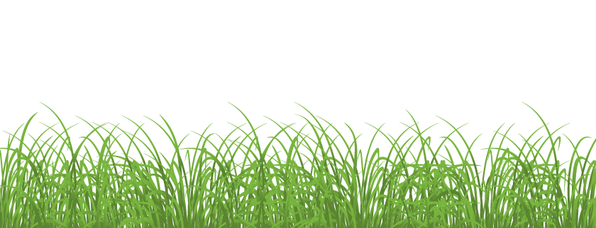 Easter grass png. Transparent image arts
