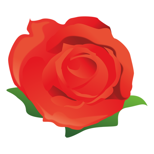 Rosas vector rose. Cartoon pictures of roses