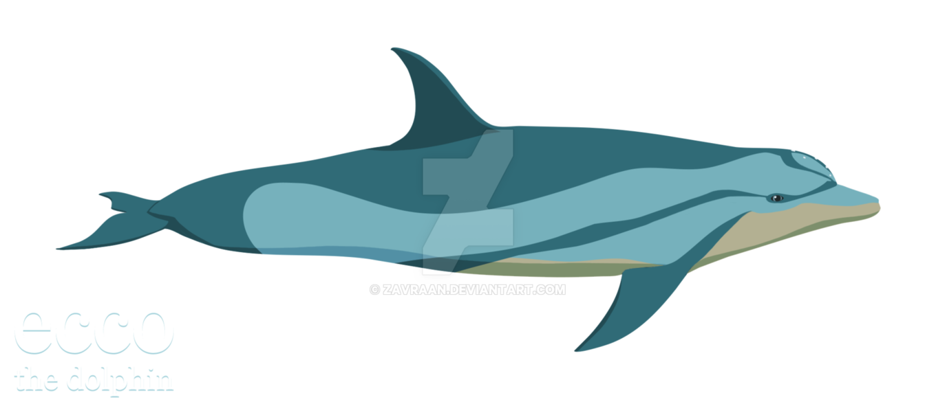 Ecco the dolphin png. New style by zavraan
