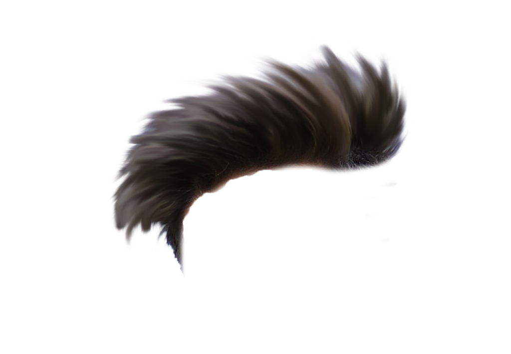 Hair png vector. Cb editing download for