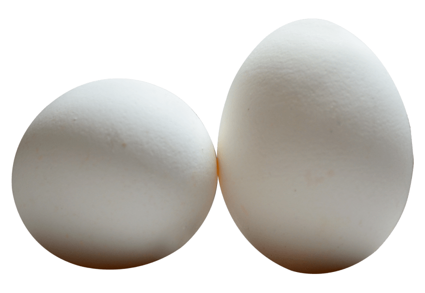Eggs vector salted egg. Png free images toppng