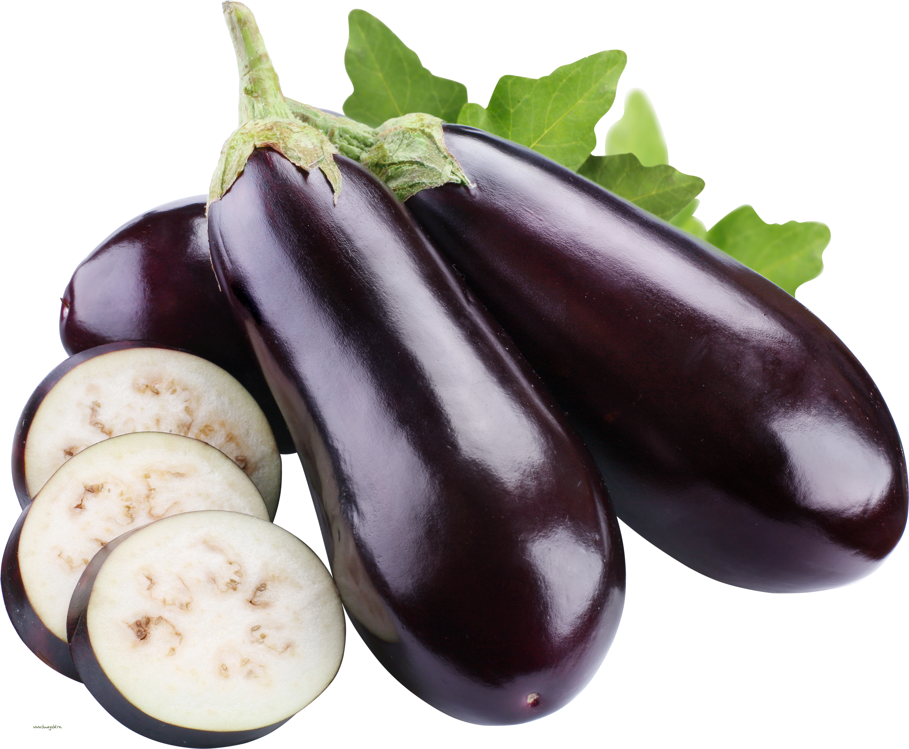 Eggplant vector one. Png images free download