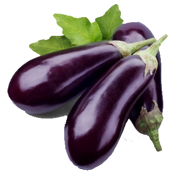 Eggplant png. Transparent images all free