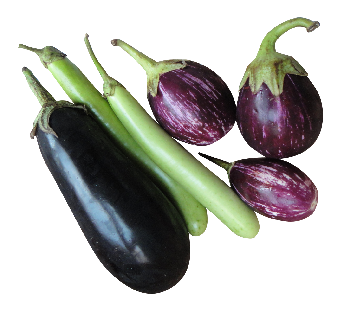 Eggplant transparent background. Hd png free icons