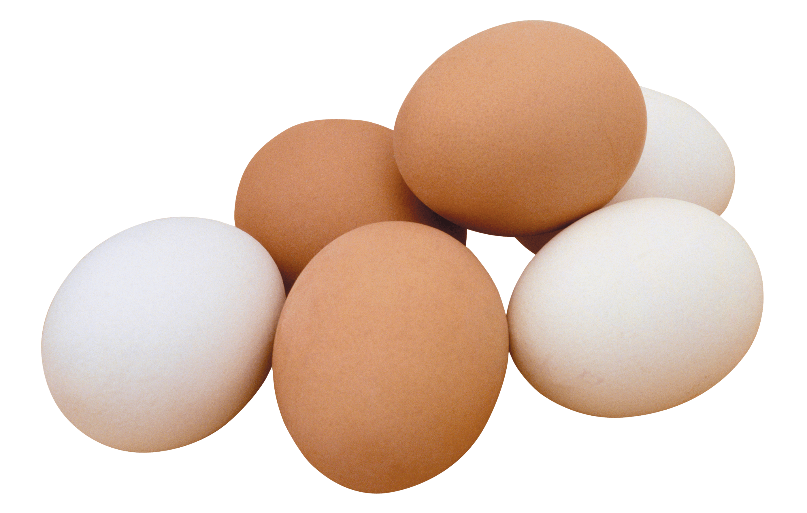 white eggs png