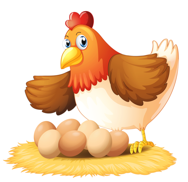 hen vector illustrator
