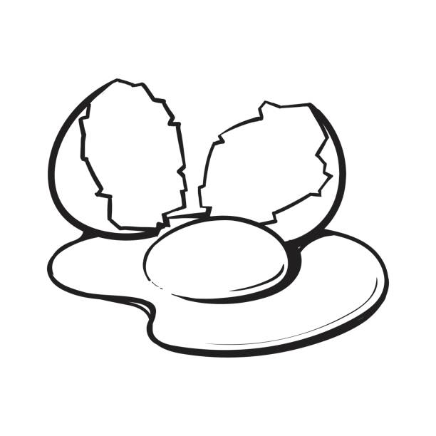 Eggs clipart outline. Cracked egg drawing at