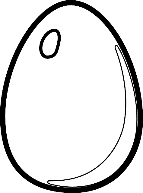 Eggs clipart outline. Egg line drawing at