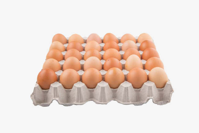 Eggs clipart tray clipart. Paddle egg packaging care