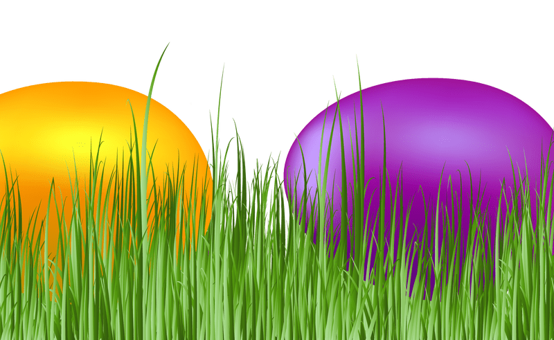Eggs vector grass. Easter png download image