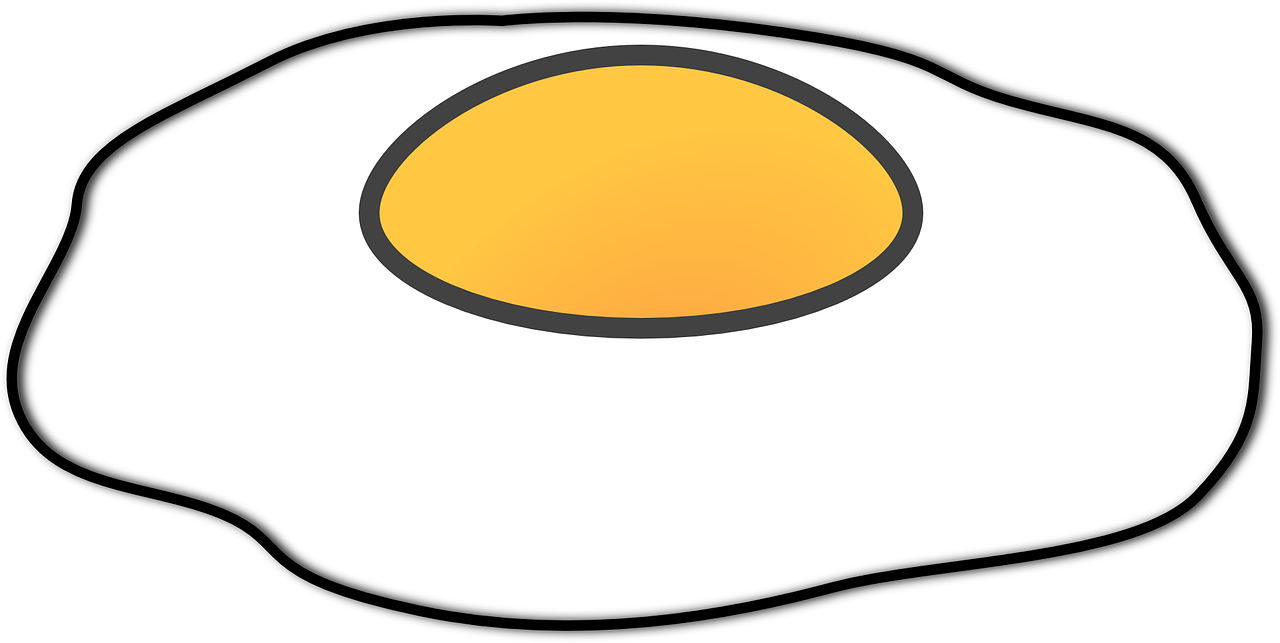 Egg fried isolated yolk. Eggs vector nutritious food banner black and white