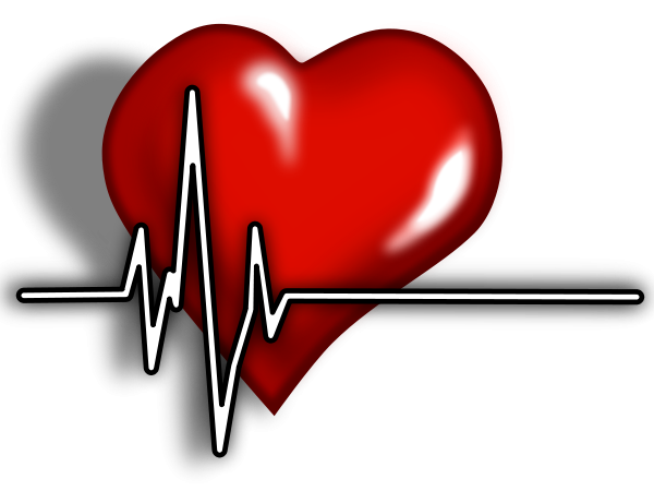 Heart clipart pulse. Free ekg cliparts download
