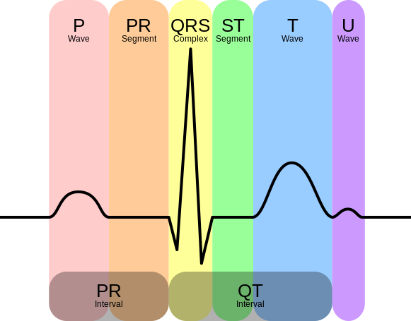 Ekg svg heart beat. Rate monitor ad interface