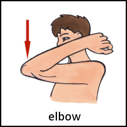 Elbow clipart body part. Pecs card