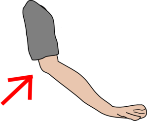 Elbow clipart body part. Mfs now u know