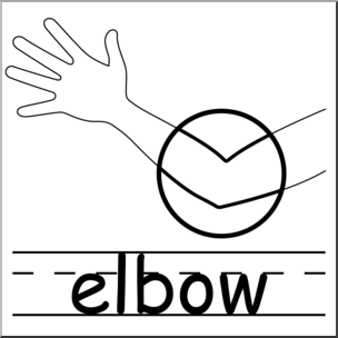 Elbow clipart body part. Clip art parts of