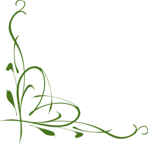 Elegant drawing vine. Grapevine border use these